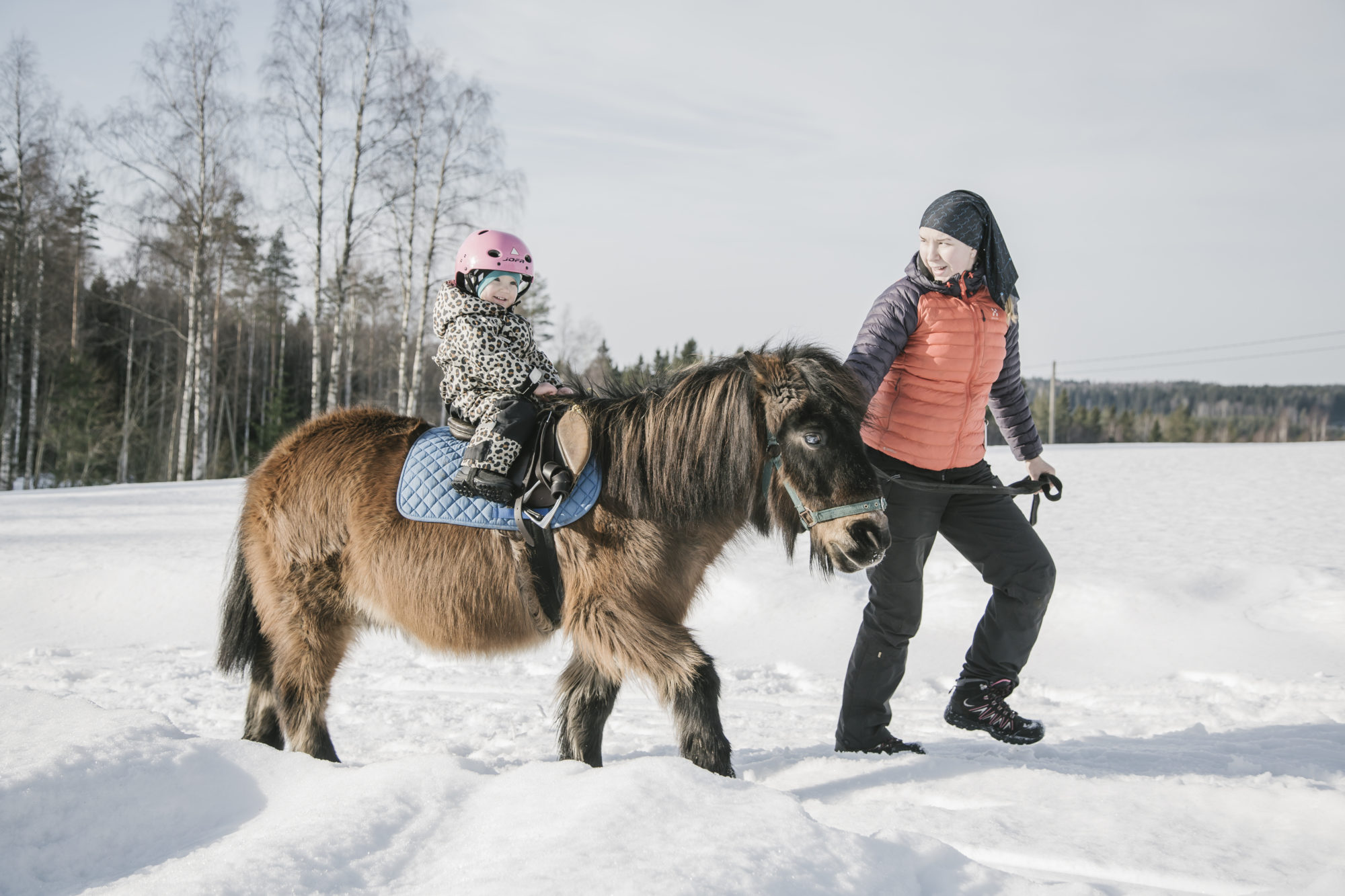Pony riding in the winter